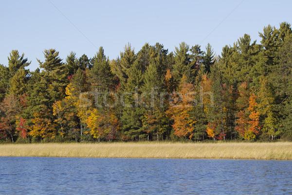 Düşmek renkli sahne Wisconsin nehir Stok fotoğraf © mybaitshop