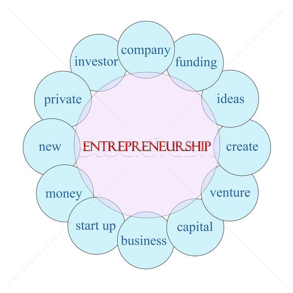 Girişimcilik kelime diyagram pembe mavi Stok fotoğraf © mybaitshop