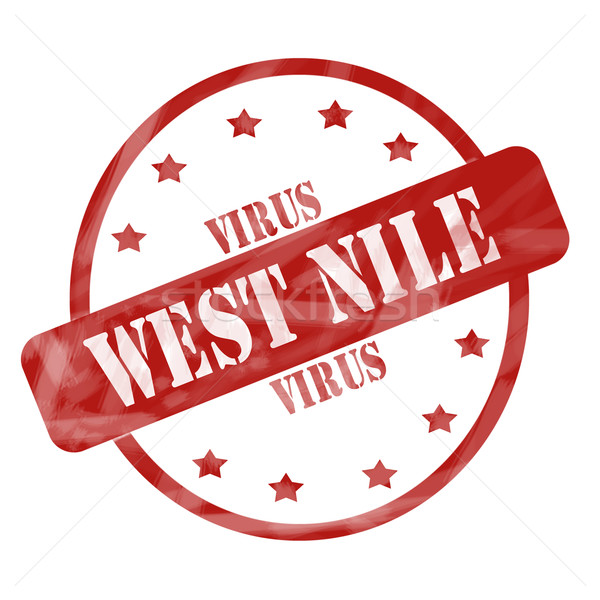 Red Weathered West Nile Virus Stamp Circle and Stars Stock photo © mybaitshop