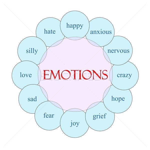 Emociones circular palabra diagrama rosa azul Foto stock © mybaitshop