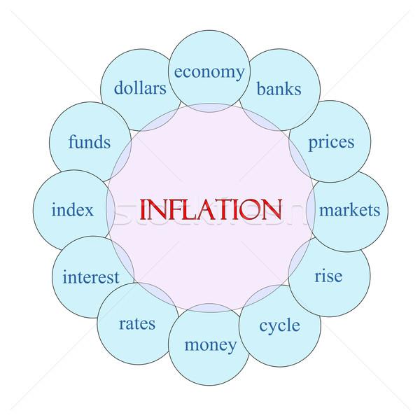 Inflación circular palabra diagrama rosa azul Foto stock © mybaitshop