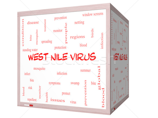 West Nile Virus Word Cloud Concept on a 3D cube Whiteboard Stock photo © mybaitshop