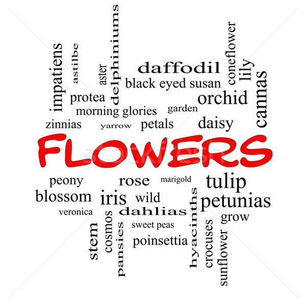 Flowers Word Cloud Concept in red caps Stock photo © mybaitshop
