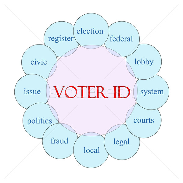 Voter ID Word Concept Stock photo © mybaitshop