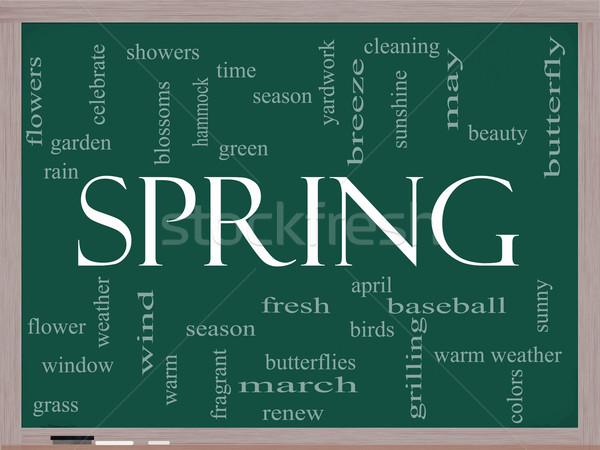 Spring Word Cloud Concept on a Blackboard Stock photo © mybaitshop
