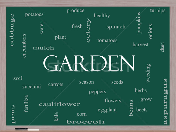 Garden Word Cloud Concept on a Blackboard Stock photo © mybaitshop