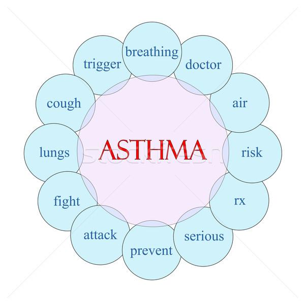 Asma palavra diagrama rosa azul Foto stock © mybaitshop