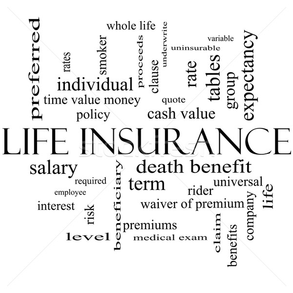 Life Insurance Word Cloud Concept in black and white Stock photo © mybaitshop