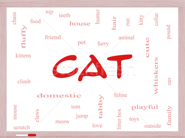 Cat Word Cloud Concept on a Dry Erase Board Stock photo © mybaitshop