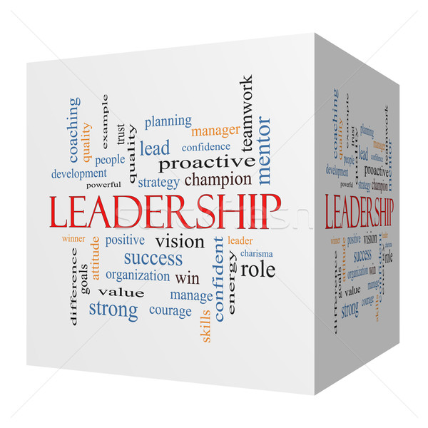 Leadership 3D cube Word Cloud Concept Stock photo © mybaitshop