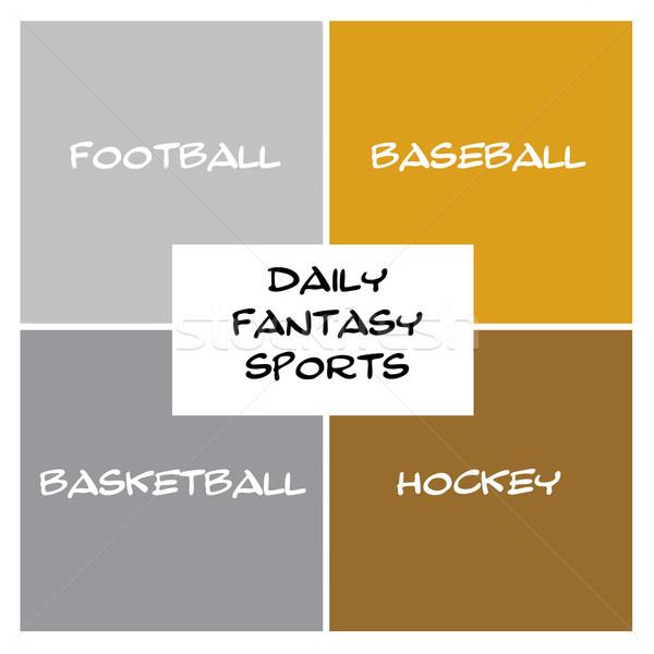 Codziennie fantasy sportowe pola prostokąt srebrny Zdjęcia stock © mybaitshop