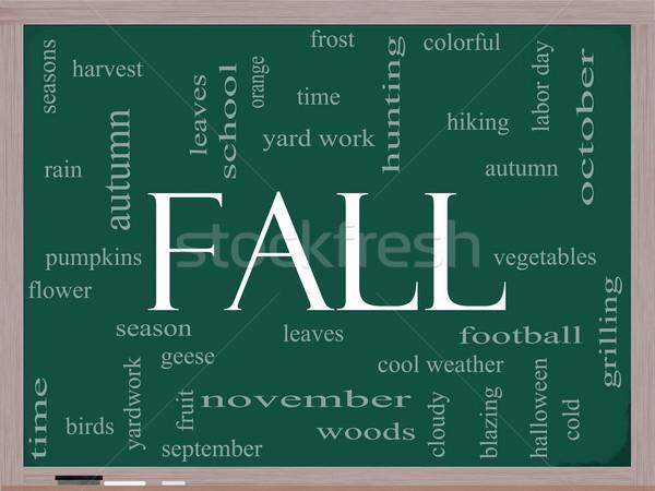Fall or Autumn Word Cloud Concept on a Blackboard Stock photo © mybaitshop