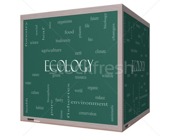 Ecology Word Cloud Concept on a 3D Blackboard Stock photo © mybaitshop