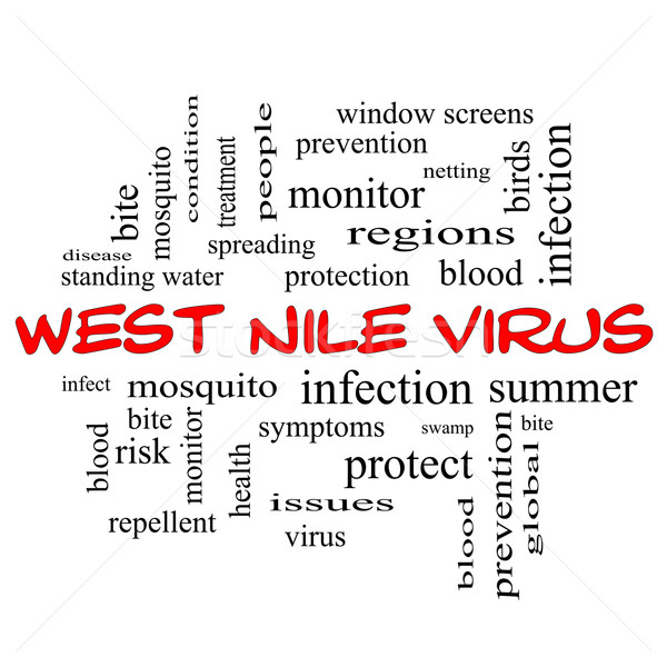 West Nile Virus Word Cloud Concept in red caps Stock photo © mybaitshop
