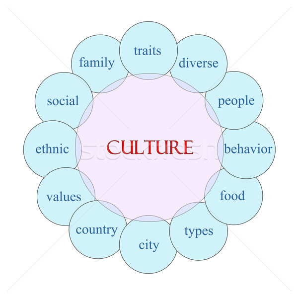 Culture circulaire mot diagramme rose bleu Photo stock © mybaitshop