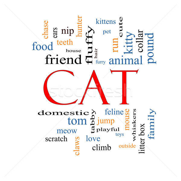 Cat Word Cloud Concept Stock photo © mybaitshop