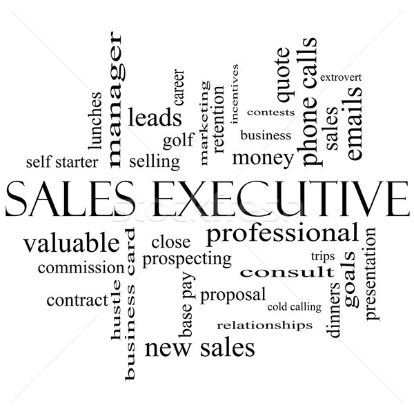 Sales Executive Word Cloud Concept in black and white Stock photo © mybaitshop