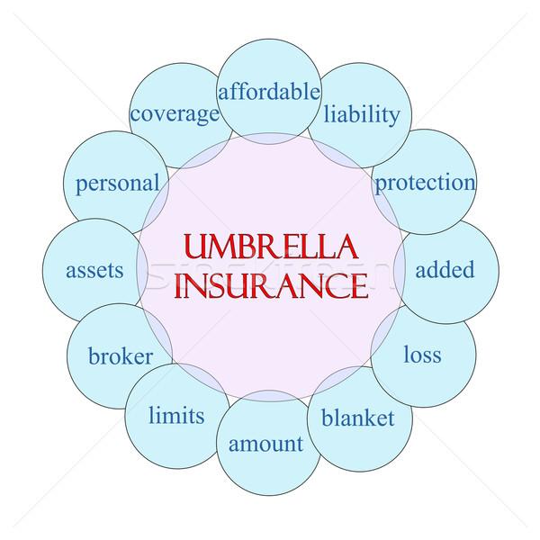 Esernyő biztosítás körkörös szó diagram rózsaszín Stock fotó © mybaitshop