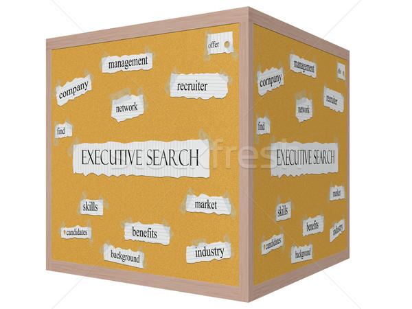 Uitvoerende Zoek 3D kubus woord groot Stockfoto © mybaitshop