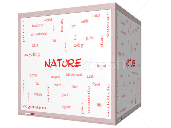 Stock photo: Nature Word Cloud Concept on a 3D cube Whiteboard