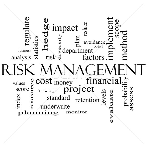 Risk Management Word Cloud Concept in black and white Stock photo © mybaitshop