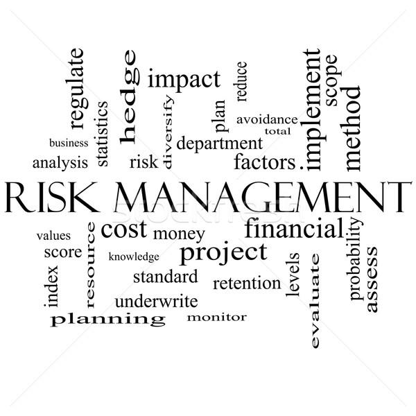 Управление рисками слово облако черно белые финансовых больше Сток-фото © mybaitshop