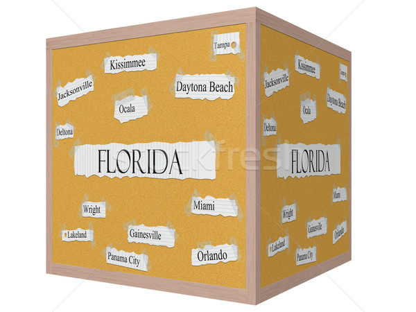 Florida State 3D cube Corkboard Word Concept Stock photo © mybaitshop