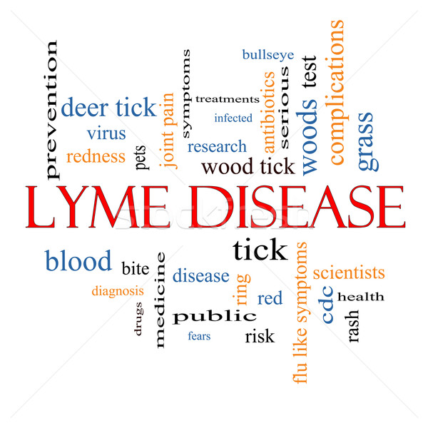 Lyme Disease Word Cloud Concept Stock photo © mybaitshop