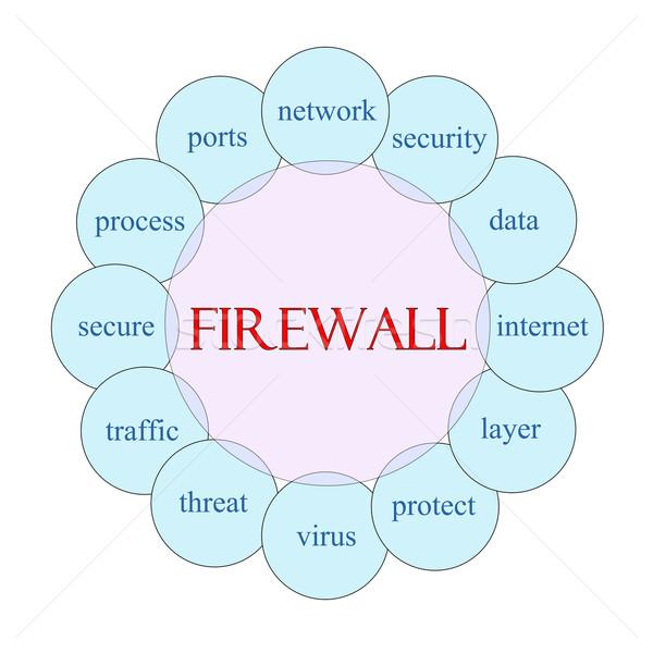 Tűzfal körkörös szó diagram rózsaszín kék Stock fotó © mybaitshop