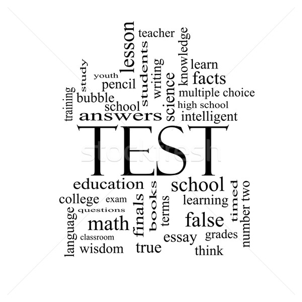 Test Word Cloud Concept in black and white Stock photo © mybaitshop