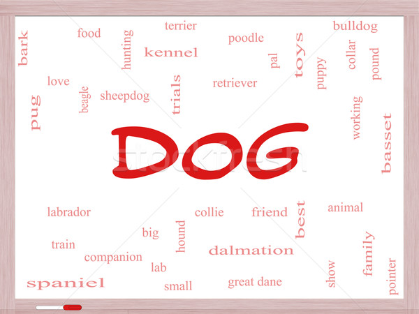 Dog Word Cloud Concept on a Dry Erase Board Stock photo © mybaitshop