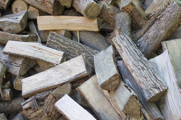 Liściastego drewna Zdjęcia stock © mybaitshop