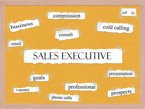 Sales Executive Corkboard Word Concept Stock photo © mybaitshop