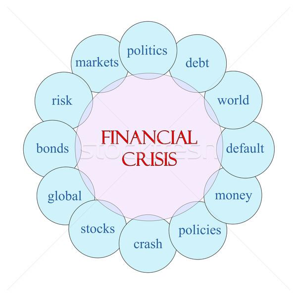 Finansal kriz kelime diyagram pembe mavi Stok fotoğraf © mybaitshop