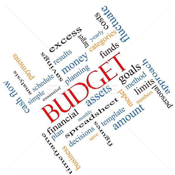 Budget woordwolk groot doelen meer Stockfoto © mybaitshop