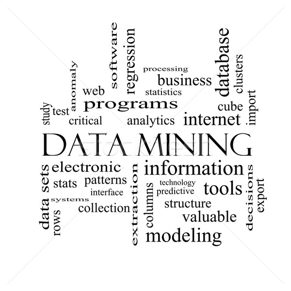 Data Mining Word Cloud Concept in black and white Stock photo © mybaitshop