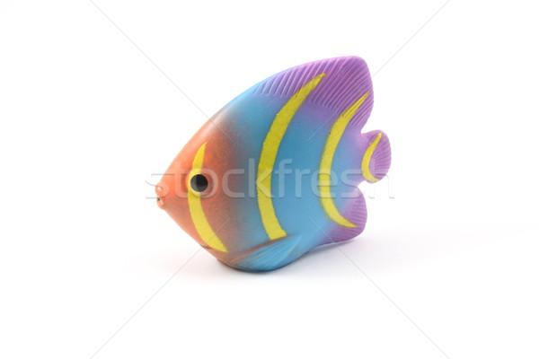 Сток-фото: тропические · рыбы · игрушку · красочный · белый · морем · океана