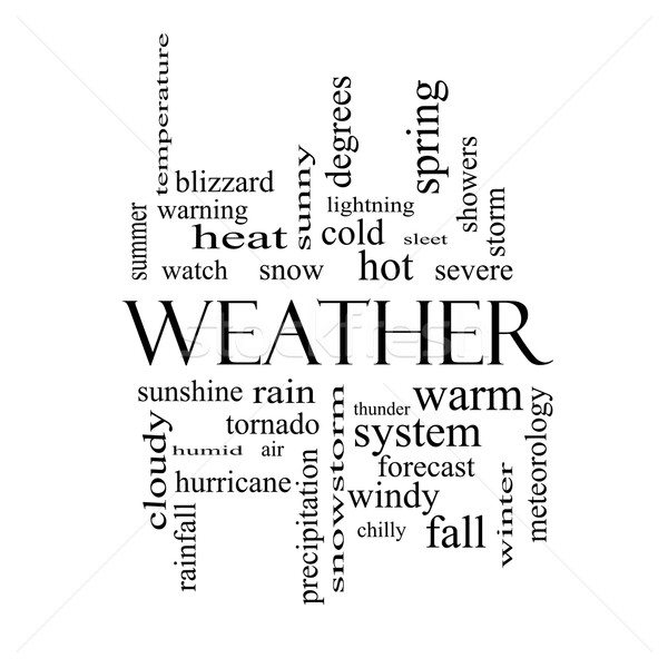 Weather Word Cloud Concept in black and white Stock photo © mybaitshop