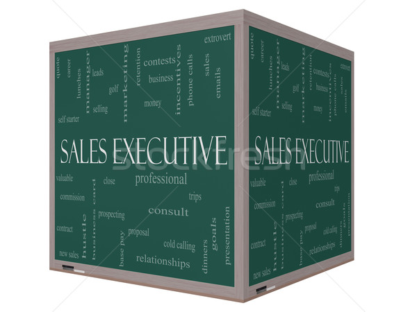 Sales Executive Word Cloud Concept on a 3D cube Blackboard Stock photo © mybaitshop
