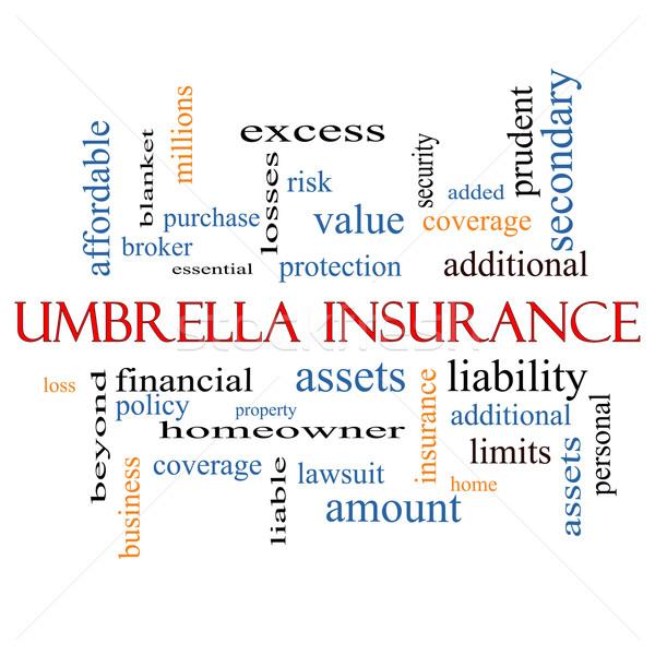 Umbrella Insurance Word Cloud Concept Stock photo © mybaitshop
