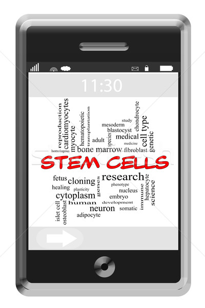 Stem Cells Word Cloud Concept on Touchscreen Phone Stock photo © mybaitshop