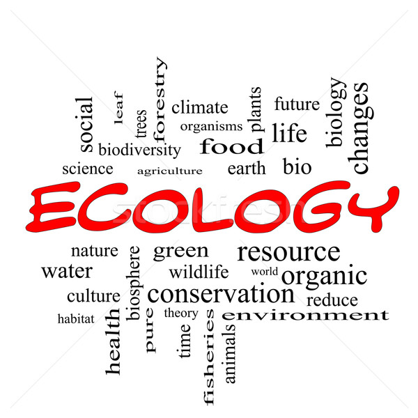 Ecology Word Cloud Concept in red caps Stock photo © mybaitshop