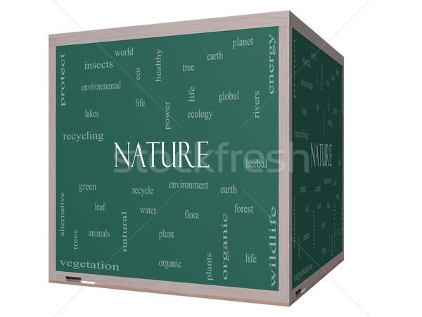 Natur Wort-Wolke 3D Würfel Tafel groß Stock foto © mybaitshop