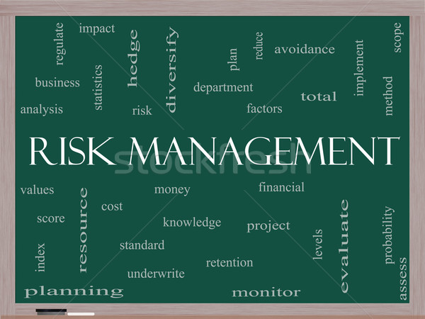 Risk Management Word Cloud Concept on a Blackboard Stock photo © mybaitshop