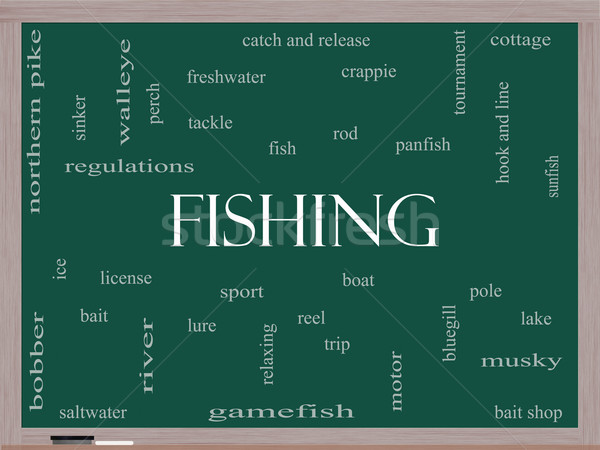 Fishing Word Cloud Concept on a Blackboard Stock photo © mybaitshop