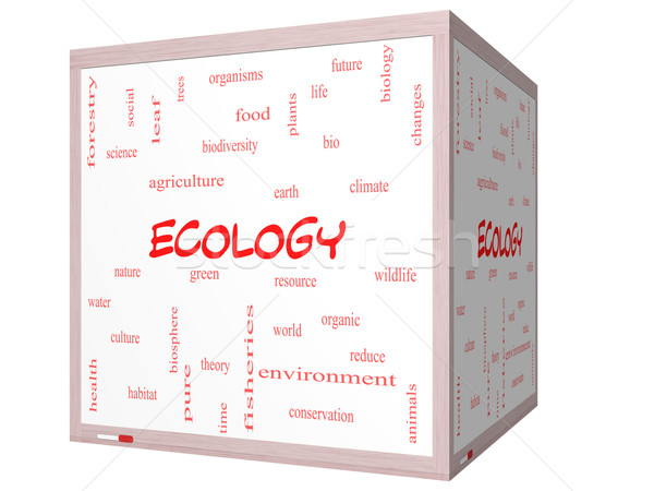 Ecology Word Cloud Concept on a 3D cube Whiteboard Stock photo © mybaitshop