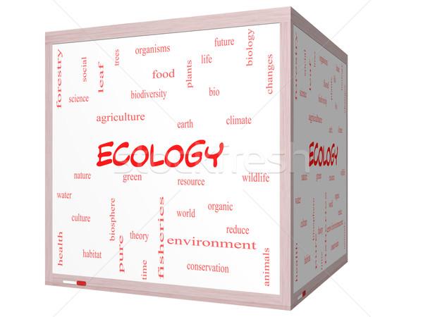 Ecologie woordwolk 3D kubus groot Stockfoto © mybaitshop