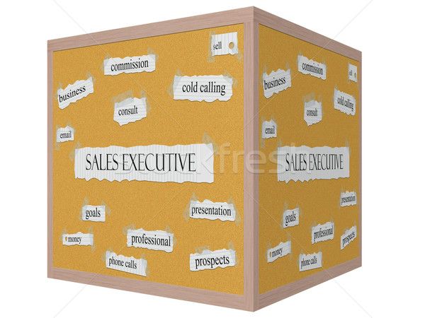 Sales Executive 3D cube Corkboard Word Concept Stock photo © mybaitshop