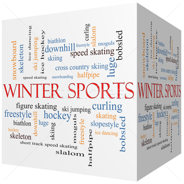 Winter Sports 3D cube Word Cloud Concept Stock photo © mybaitshop