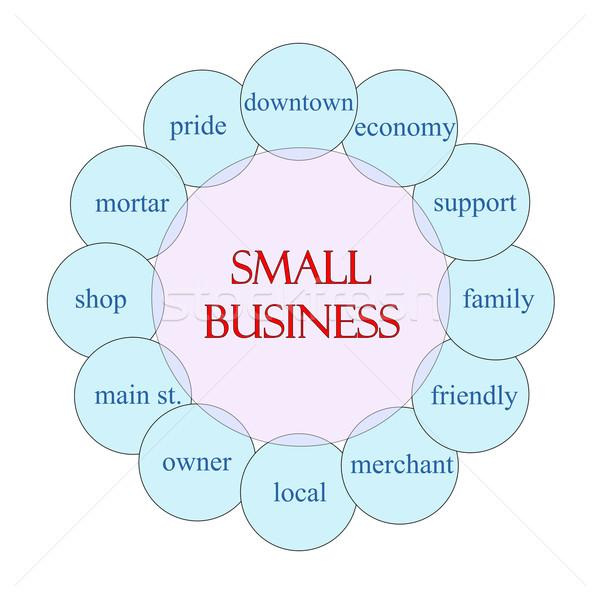Petit commerce circulaire mot diagramme rose bleu Photo stock © mybaitshop